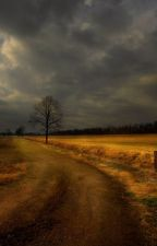 The Old Dirt Road by catunicornowl