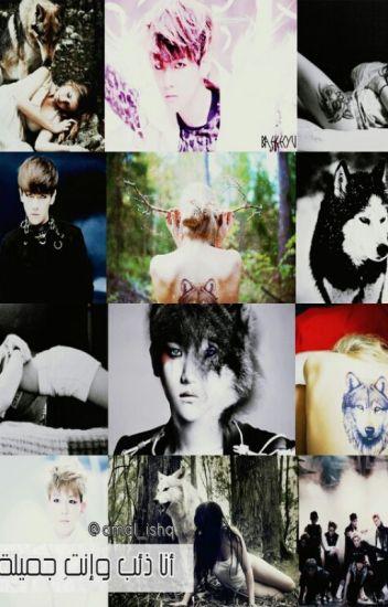 أنا الذئب وإنتِ جميلة ||I am a wolf and you are beautiful