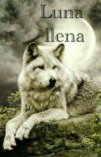 Luna Llena by YunaYami