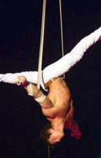 Au cirque by mikkysophie