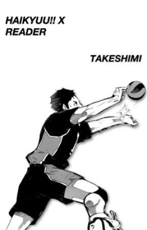 Haikyuu!! x Reader (ON HOLD) by Takeshimi
