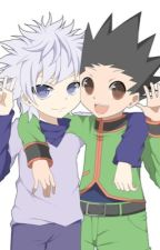The Demon Hunter (Killua x Gon x reader) [COMPLETED] by Essencede