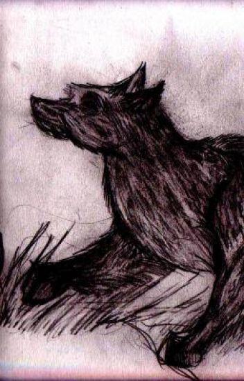 Husky ♥