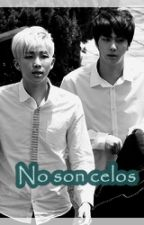 [Namjin] No son celos by MayuSaga