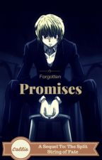 Forgotten Promises (Kurapika x Reader, Sequel To: The Split String of Fate) by oOcalypsoOo