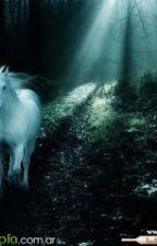 El secreto del bosque by SallyRowling