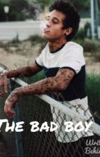 The bad boy Cameron Dallas fan-fic) by kiansbae154