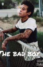 The bad boy Cameron Dallas fan-fic) by kiansbae154