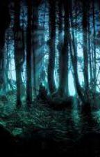 The dark forest by Rainbowunicorn151