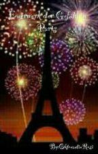 Feuerwerk der Gefühle in Paris (Slow Updates) by OktonautinRosi
