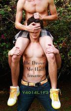 He Drove Me Half Insane by Y4014L1F3