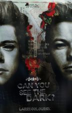 Can you see the Dark? (L.s. Fanfic) by larrycoloursx