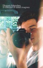 Shawn Mendes Imagines by CelestesCorner