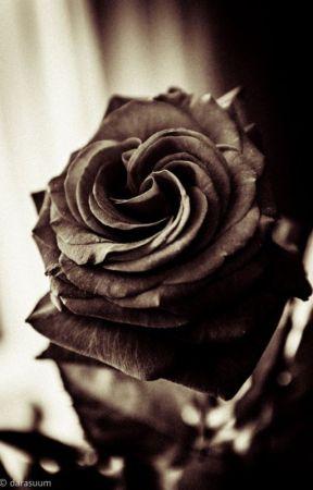 Thorns In A Black Rose Tears Of Blood Wattpad