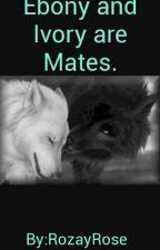 Ebony And Ivory Are Mates. by RozayRose