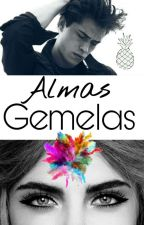 Almas Gemelas ||PAUSADA|| by MAPS200