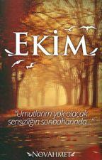 Ekim by novahmet