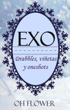 EXO    Drabbles, viñetas y oneshots © by OhFlower