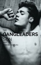 The Gangleaders Son [ON HOLD FOR EXAMS] by Pho3nixOnFir3