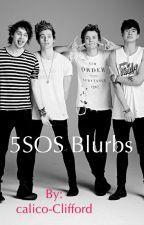 5SOS Blurbs by calico-Clifford