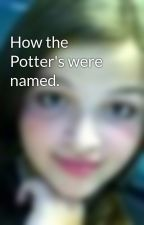 How the Potter's were named. by TylerrrLouisee