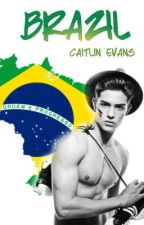Brazil // (Francisco Lachowski) by waitinforthebluebox
