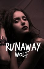 Runaway Wolf by NYC678