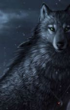 Percy Jackson: The wolf and the moon   (On hold) by Nightmares26