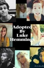 Adopted by Luke Hemmings (L.R.H ff)  by anon5sosWriter