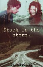 Stuck in the storm. by BaeFoster