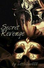 Secret Revenge by LittleLiar888