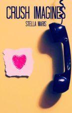 Crush x Reader (Boyfriend Imagines) by _Stella_Maris_
