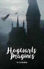 Hogwarts Imagines by lupinswand