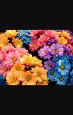 A Menina Que Adorava As Flores   (Livro Infantil♥) by Lilisaprincess
