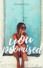 You Promised | Shawn Mendes [VF] by WhoIReallyWantToBe