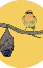 Birds of a Feather (Percy Jackson Fanfiction) by ICantPickAFavFandom