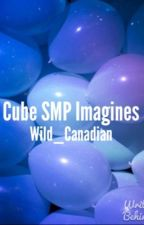 Cube SMP Imagines by Wild_Canadian