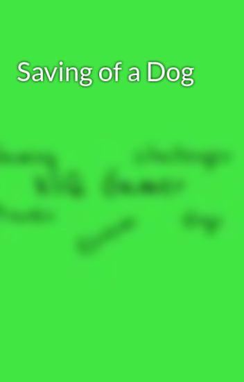 Saving of a Dog
