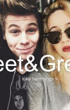 Meet&Greet (Luke hemmings y tu) by pocitowillyhoran13
