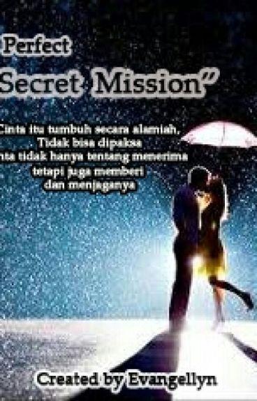 """""""perfect secret mission """""""