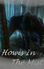 Howls In The Mist [Not All About Romance] by boccowitch