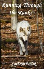 Running Through the Ranks by cathryntvrdik