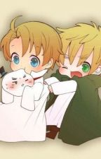 Chibi,2p,1p hetalia x male reader by pinkrose1234567