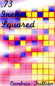 .73 Inches Squared by precambriansupereon