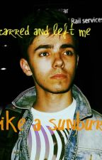 Scarred and Left Me Like a Sunburn (Nathan Sykes Fanfiction) by Beckyf_tw