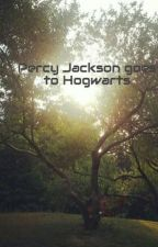 Percy Jackson goes to Hogwarts by DREAM_FLIER