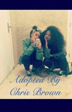 Adopted By Chris Brown  by zaddywritess