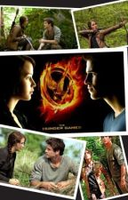 The Hunger Games by HayleeGrech