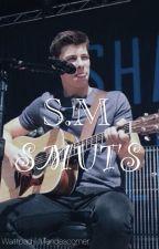 Shawn Mendes Smut by mendescorner