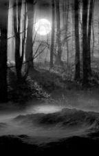 contos de terror by glaucialinda123